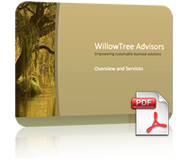 Willowtree Advisors Service Overview